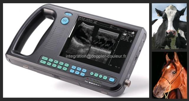 image ECHOGRAPHE ULTRAPORTABLE VETERINAIRE