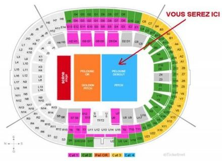 a saisir 3 places dernier concert de johnny au stade de france 31 05 09 paris 08 lys e 75008. Black Bedroom Furniture Sets. Home Design Ideas