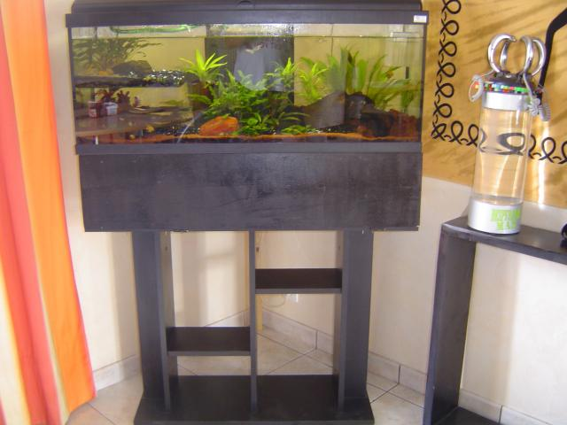 aquarium 120l original sor ze 81540. Black Bedroom Furniture Sets. Home Design Ideas