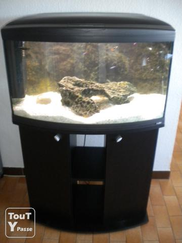 Aquarium 150l et meuble li ge 4000 for Meuble poisson