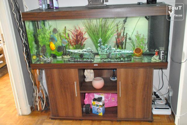 aquarium juwel rio 400 litres bruxelles 1000. Black Bedroom Furniture Sets. Home Design Ideas