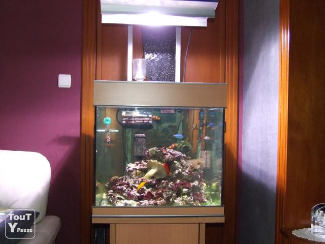aquarium eau de mer occasion a vendre. Black Bedroom Furniture Sets. Home Design Ideas