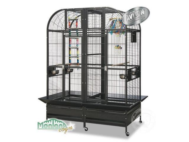 chicago perroquet couleur de la cage sombre antique brabant wallon. Black Bedroom Furniture Sets. Home Design Ideas