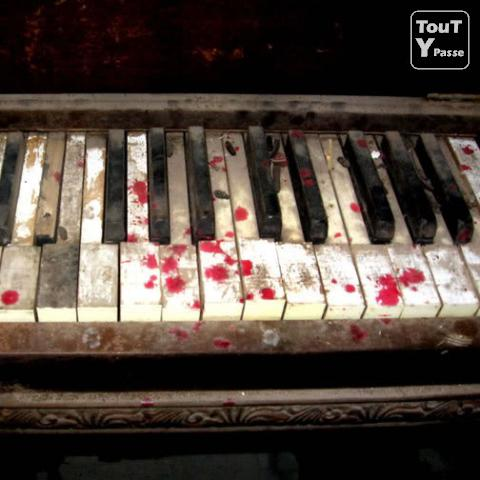 photo de Cours de piano/chant/accompagnement