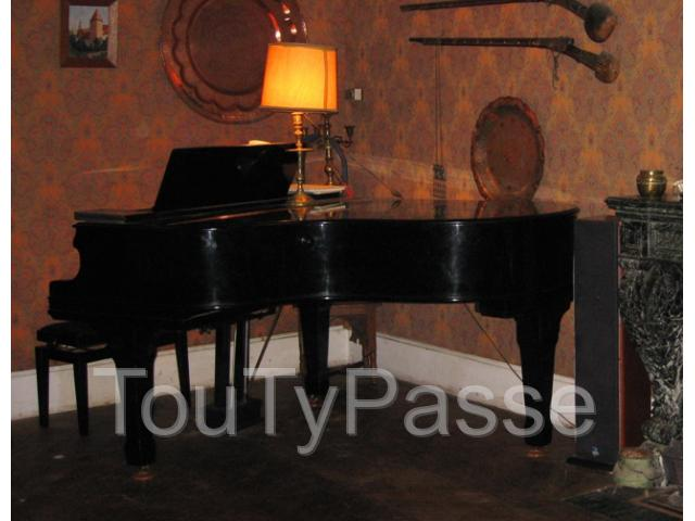 photo de GRAND PIANO Location