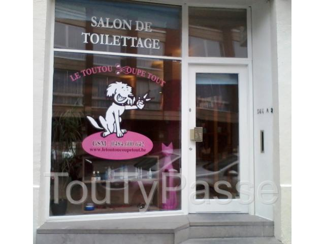 Salon de toilettage chiens et chats bruxelles ixelles 1050 for Porte de champerret salon chiens chats