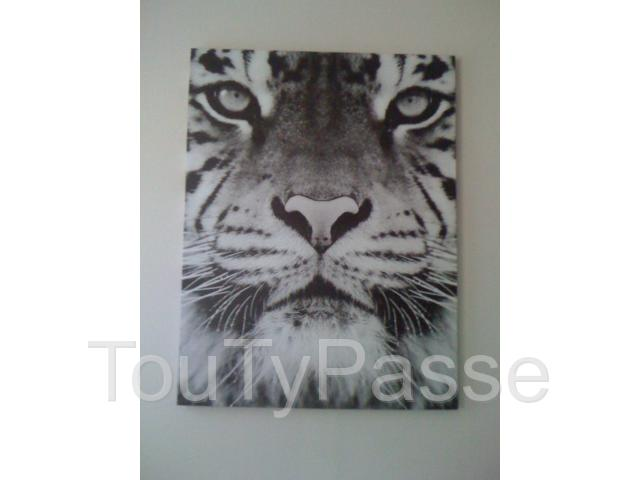photo de TABLEAU TIGRE
