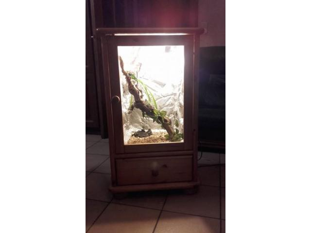 Photo beau meuble terrarium image 2/6