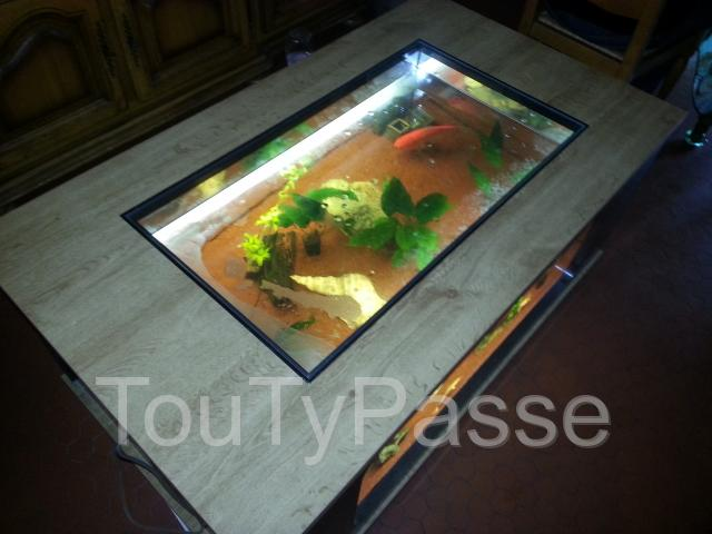 Table basse aquarium avis for Table salon aquarium